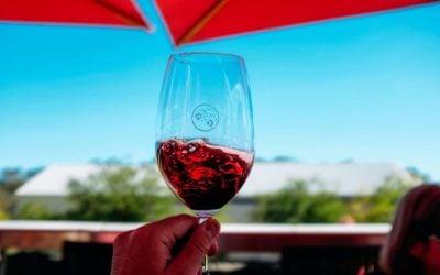 Red wine in a glass - Cellar Door - Ben Ean
